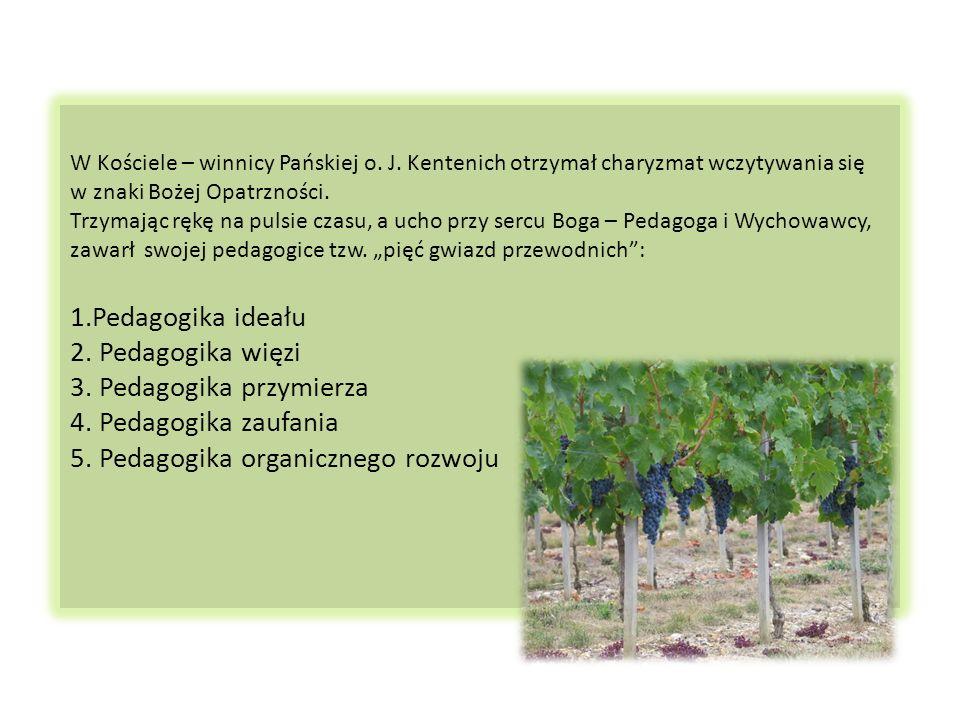 Być żywą latoroślą w Kościele – winnicy oznacza przede wszystkim pozostawać w żywej komunii z Chrystusem krzewem winnym. Latorośle nie są samowystarcz