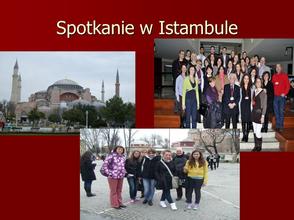 Spotkanie w Istambule