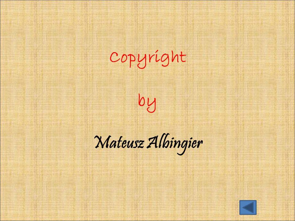 Copyright by Mateusz Albingier