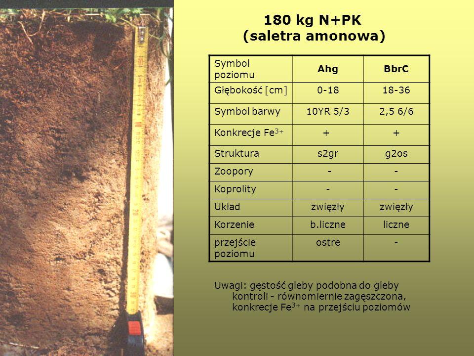 180 kg N+PK (saletra amonowa) Symbol poziomu AhgBbrC Głębokość [cm]0-1818-36 Symbol barwy10YR 5/32,5 6/6 Konkrecje Fe 3 + + + Strukturas2grg2os Zoopor