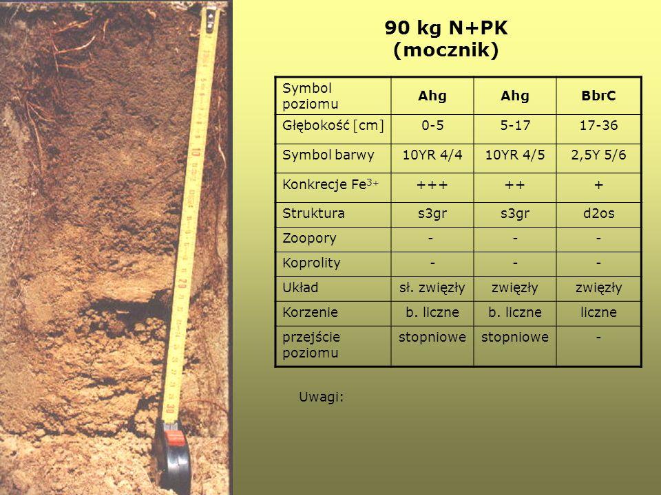 Symbol poziomu Ahg BbrC Głębokość [cm]0-55-1717-36 Symbol barwy10YR 4/410YR 4/52,5Y 5/6 Konkrecje Fe 3 + ++++++ Strukturas3gr d2os Zoopory- -- Koproli