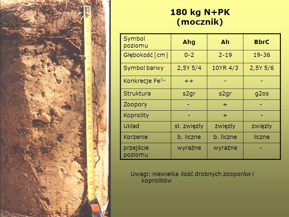 180 kg N+PK (mocznik) Symbol poziomu AhgAhBbrC Głębokość [cm]0-22-1919-36 Symbol barwy2,5Y 5/410YR 4/32,5Y 5/6 Konkrecje Fe 3 + ++-- Strukturas2gr g2o