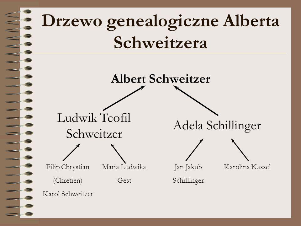 Drzewo genealogiczne Alberta Schweitzera Albert Schweitzer Ludwik Teofil Schweitzer Adela Schillinger Karolina KasselFilip Chrystian (Chretien) Karol