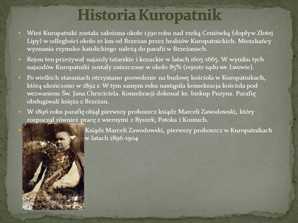 Wieś Kuropatniki została założona około 1390 roku nad rzeką Ceniówką (dopływ Złotej Lipy) w odległości około 10 km od Brzeżan przez hrabiów Kuropatnic