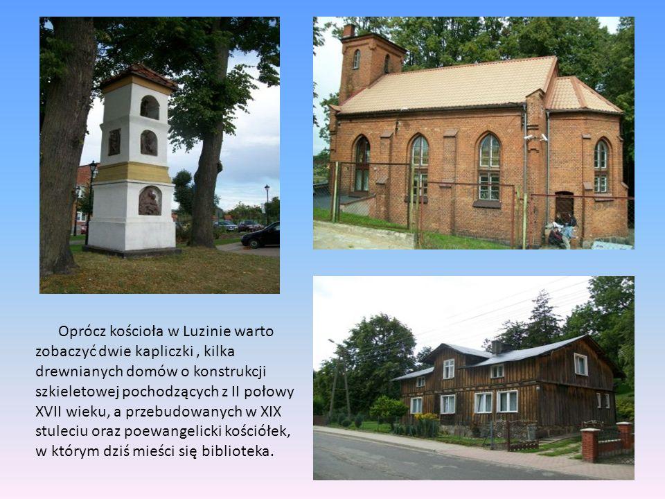 Oprócz kościoła w Luzinie warto zobaczyć dwie kapliczki, kilka drewnianych domów o konstrukcji szkieletowej pochodzących z II połowy XVII wieku, a prz