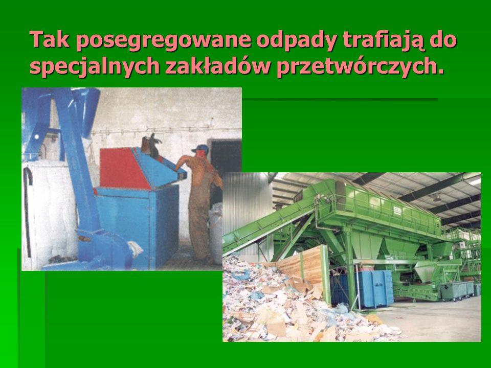 Tak posegregowane odpady trafiają do specjalnych zakładów przetwórczych.