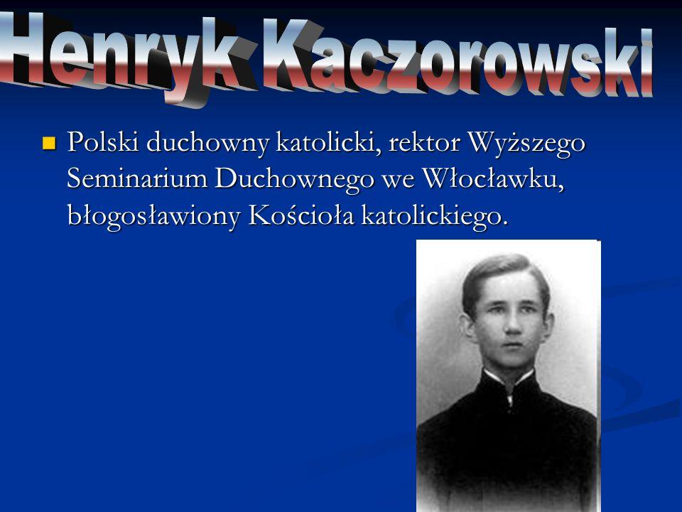 Polski ksiądz pallotyn, błogosławiony Kościoła katolickiego, męczennik II wojny światowej, kapelan zgrupowania Kryska Armii Krajowej podczas powstania warszawskiego.