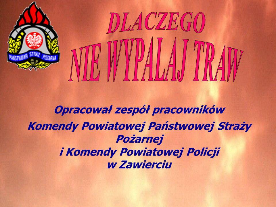 Opracował zespół pracowników Komendy Powiatowej Państwowej Straży Pożarnej i Komendy Powiatowej Policji w Zawierciu