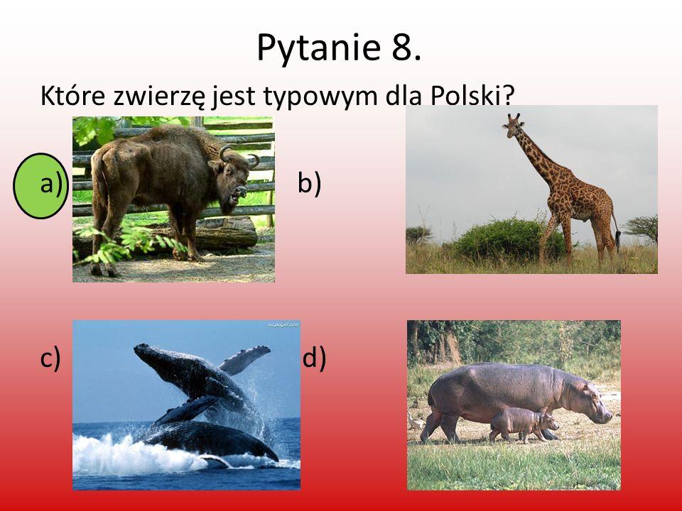 Pytanie 9. Ilu mamy sąsiadów? a)4 b)9 c)7 d)11