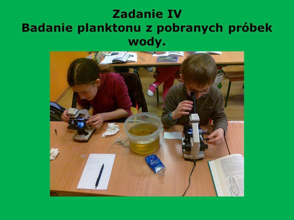 Zadanie IV Badanie planktonu z pobranych próbek wody.