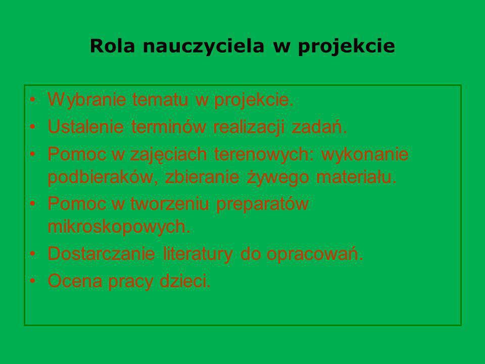 Rola nauczyciela w projekcie Wybranie tematu w projekcie. Ustalenie terminów realizacji zadań. Pomoc w zajęciach terenowych: wykonanie podbieraków, zb