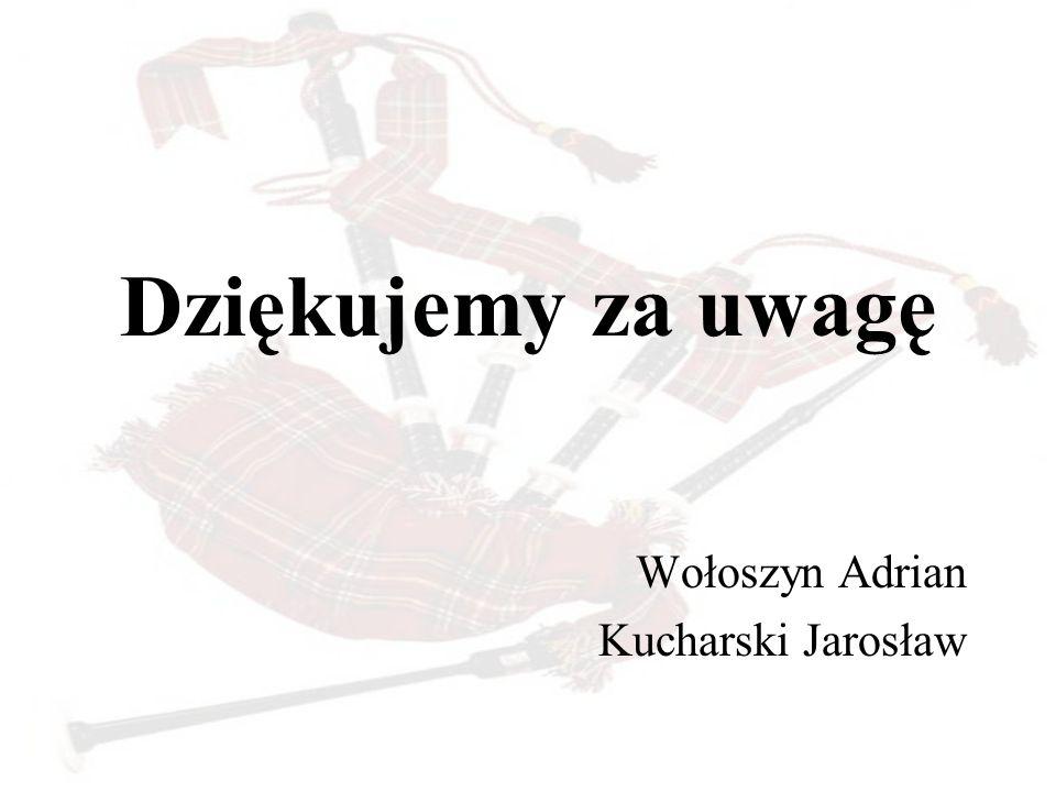 Dziękujemy za uwagę Wołoszyn Adrian Kucharski Jarosław