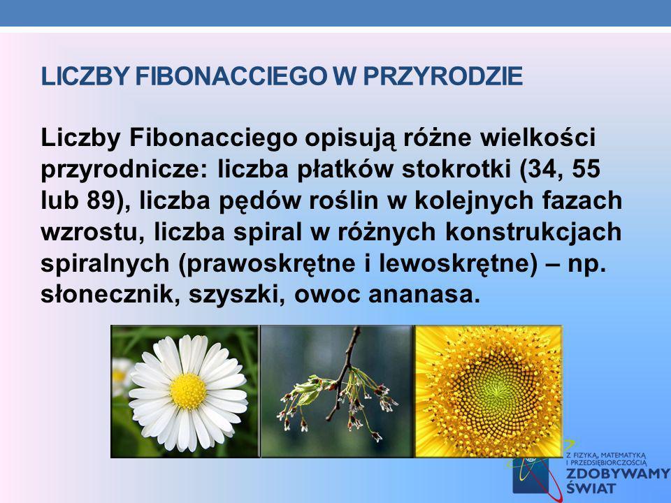 LICZBY FIBONACCIEGO W PRZYRODZIE Liczby Fibonacciego opisują różne wielkości przyrodnicze: liczba płatków stokrotki (34, 55 lub 89), liczba pędów rośl