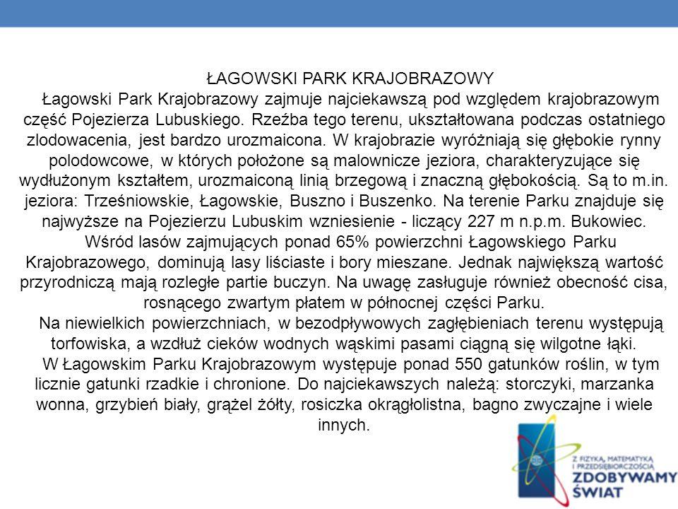 ŁAGOWSKI PARK KRAJOBRAZOWY Łagowski Park Krajobrazowy zajmuje najciekawszą pod względem krajobrazowym część Pojezierza Lubuskiego.