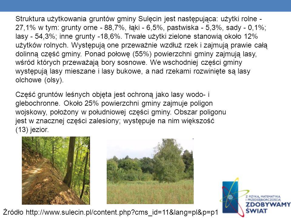 Struktura użytkowania gruntów gminy Sulęcin jest następująca: użytki rolne - 27,1% w tym: grunty orne - 88,7%, łąki - 6,5%, pastwiska - 5,3%, sady - 0,1%; lasy - 54,3%; inne grunty -18,6%.