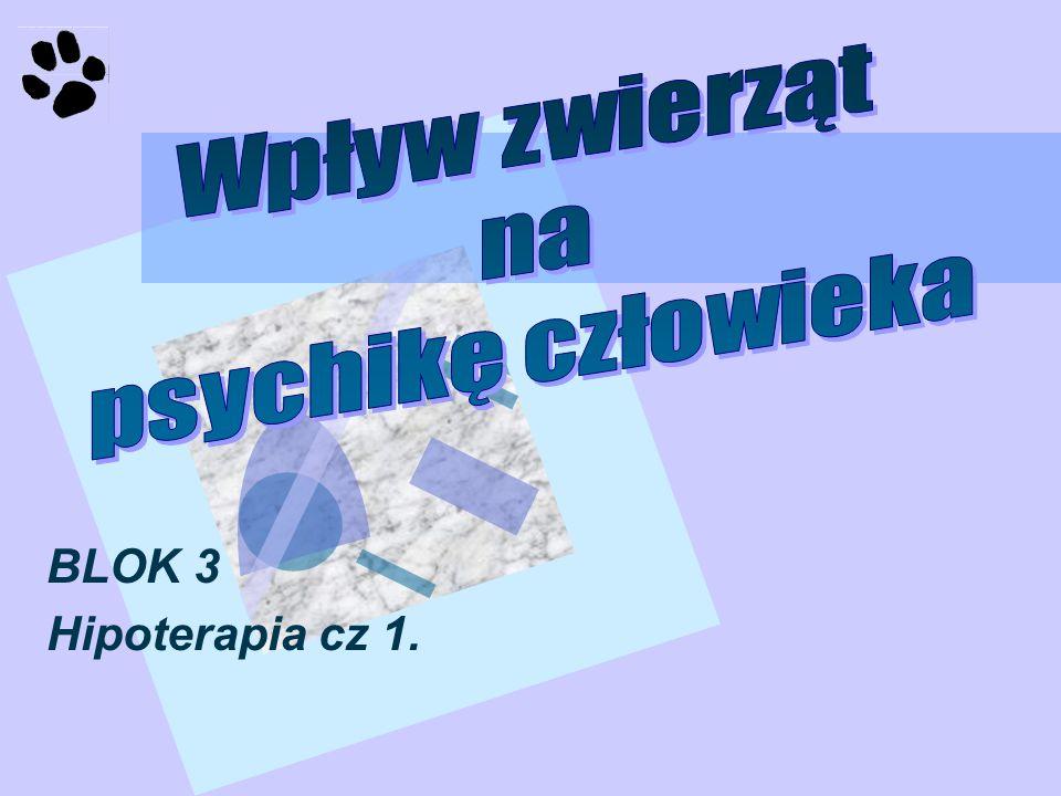 BLOK 3 Hipoterapia cz 1.