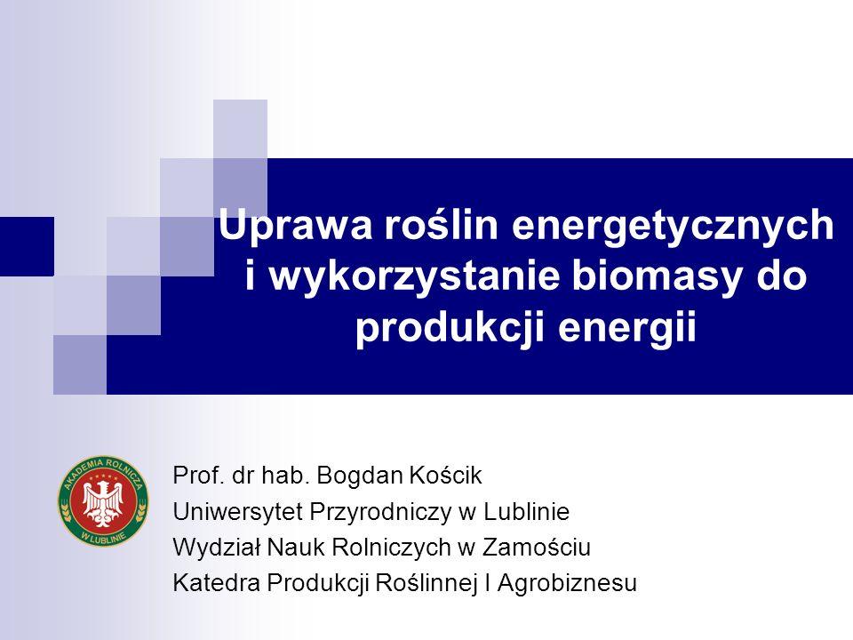 Uprawa roślin energetycznych i wykorzystanie biomasy do produkcji energii Prof. dr hab. Bogdan Kościk Uniwersytet Przyrodniczy w Lublinie Wydział Nauk