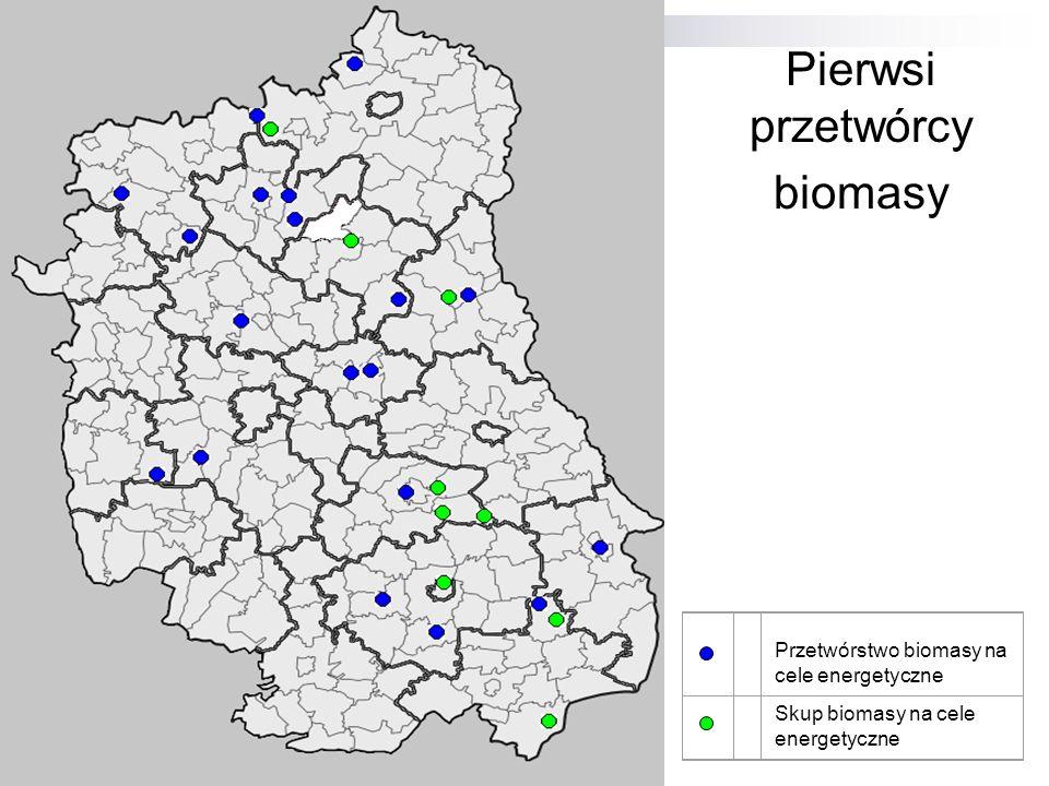 Pierwsi przetwórcy biomasy Przetwórstwo biomasy na cele energetyczne Skup biomasy na cele energetyczne