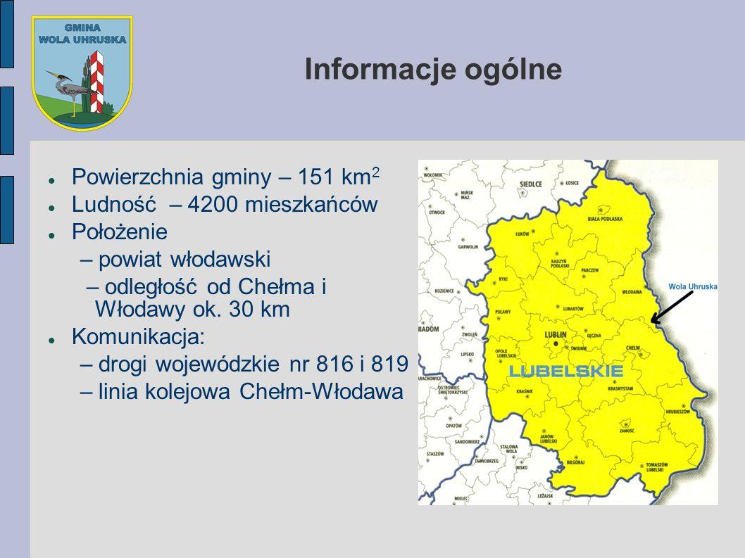 Powierzchnia gminy – 151 km 2 Ludność – 4200 mieszkańców Położenie – powiat włodawski – odległość od Chełma i Włodawy ok. 30 km Komunikacja: – drogi w
