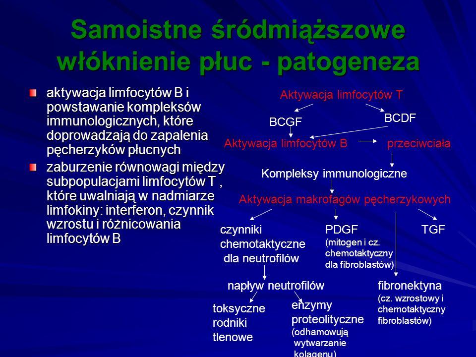 Samoistne śródmiąższowe włóknienie płuc - patogeneza aktywacja limfocytów B i powstawanie kompleksów immunologicznych, które doprowadzają do zapalenia
