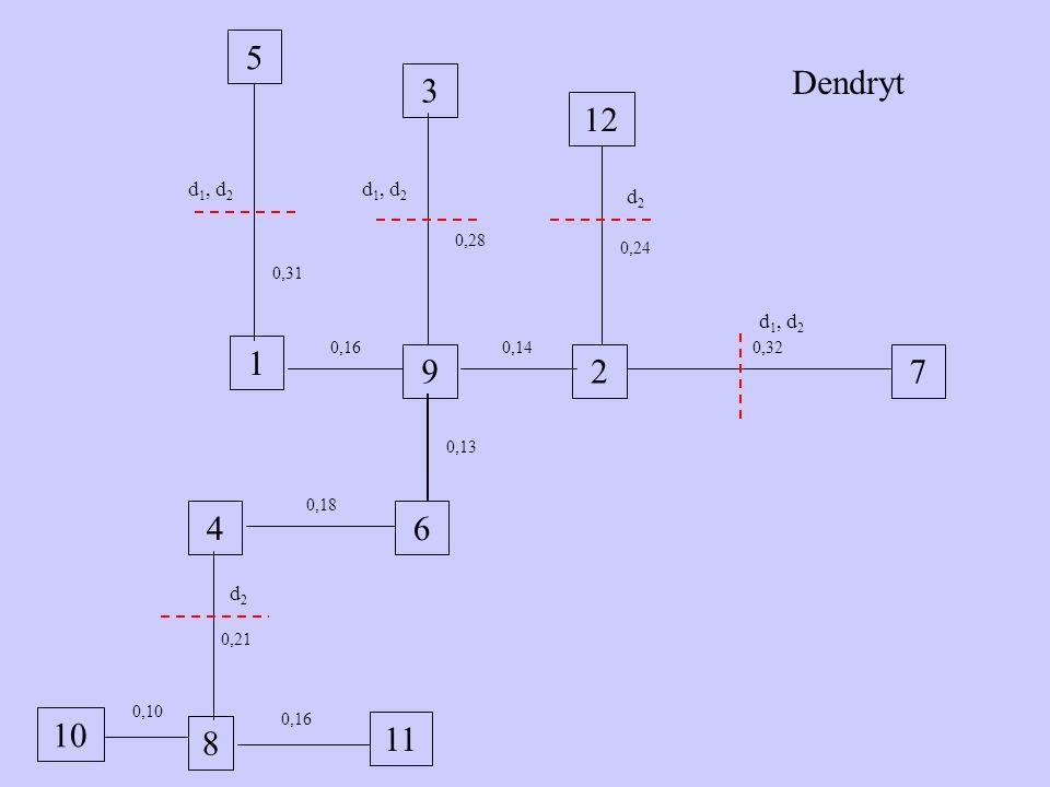 10 5 3 1 729 46 12 11 8 0,21 0,10 0,16 0,28 0,31 0,16 0,18 0,13 0,14 0,24 0,32 Dendryt d 1, d 2 d2d2 d2d2