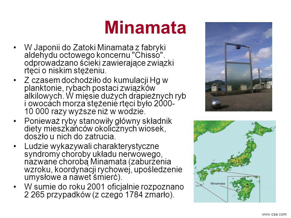Minamata W Japonii do Zatoki Minamata z fabryki aldehydu octowego koncernu Chisso .