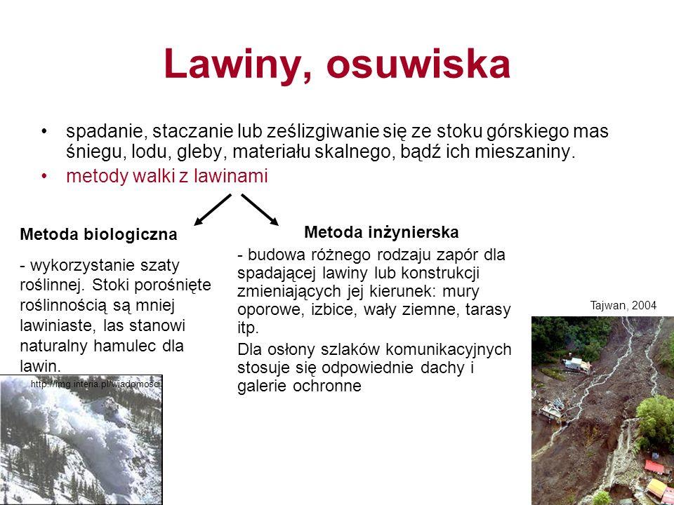Lawiny, osuwiska spadanie, staczanie lub ześlizgiwanie się ze stoku górskiego mas śniegu, lodu, gleby, materiału skalnego, bądź ich mieszaniny.