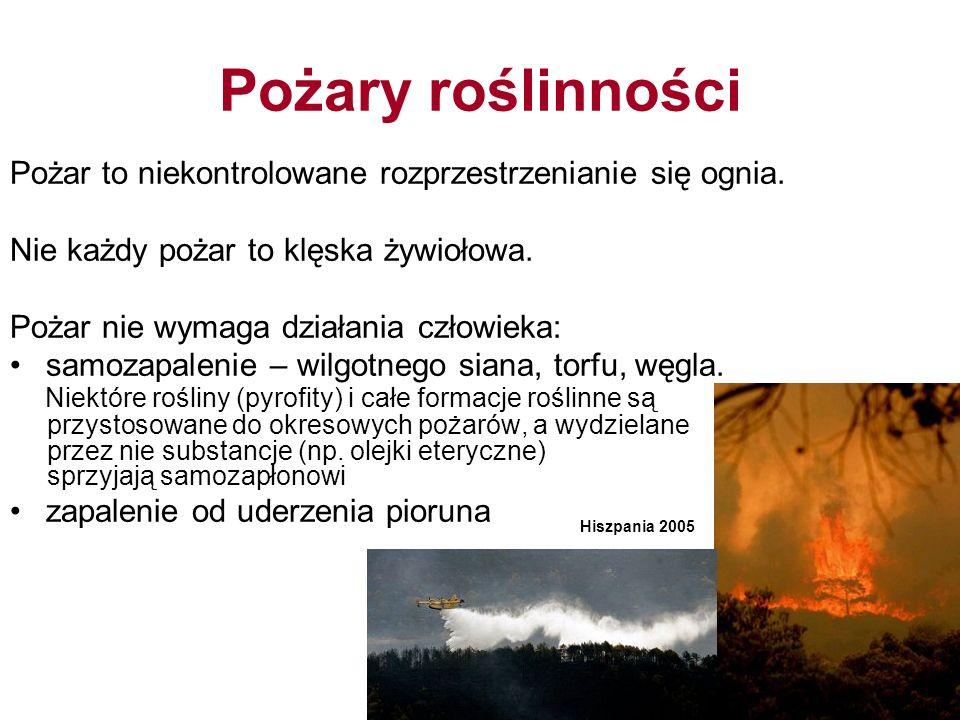 Pożary roślinności Pożar to niekontrolowane rozprzestrzenianie się ognia.