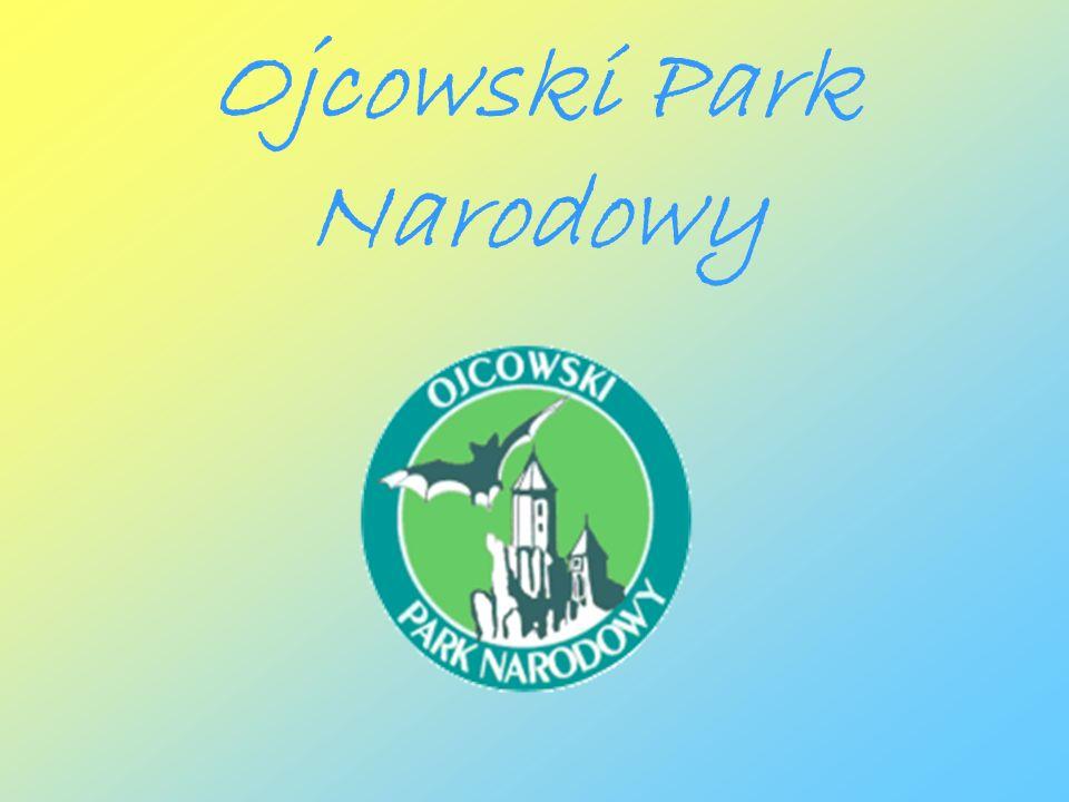 Informacje OPN po ł o ż ony jest w Polsce po ł udniowej, kilkadziesi ą t kilometrów od Krakowa.