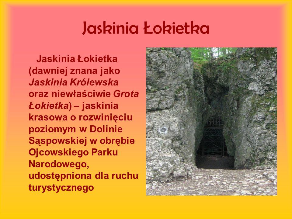 Jaskinia Łokietka Jaskinia Łokietka (dawniej znana jako Jaskinia Królewska oraz niewłaściwie Grota Łokietka) – jaskinia krasowa o rozwinięciu poziomym