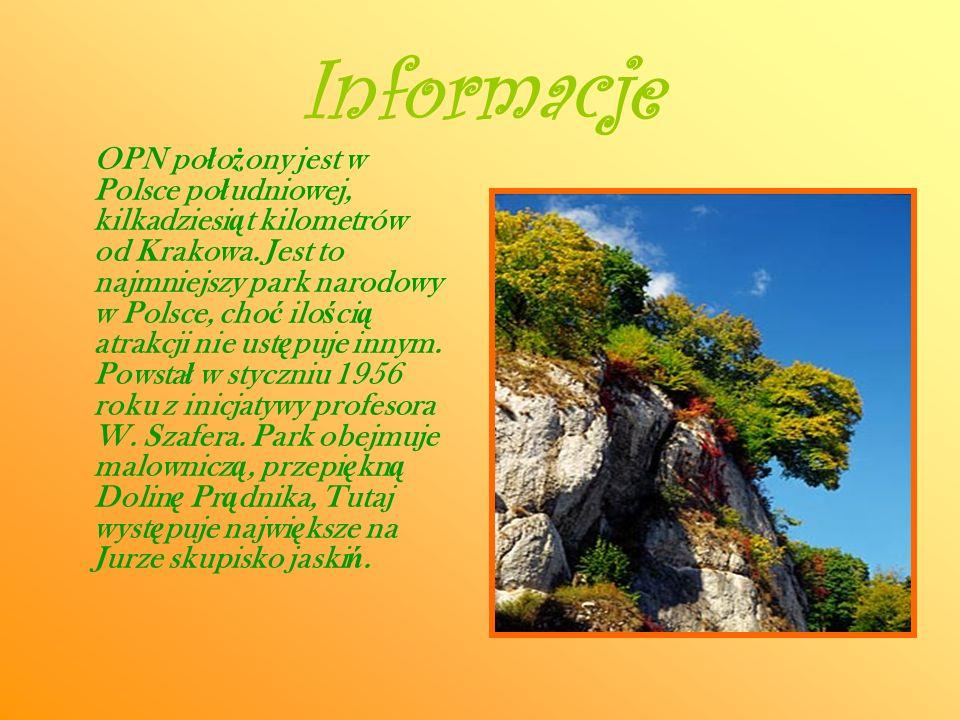 Informacje OPN po ł o ż ony jest w Polsce po ł udniowej, kilkadziesi ą t kilometrów od Krakowa. Jest to najmniejszy park narodowy w Polsce, cho ć ilo