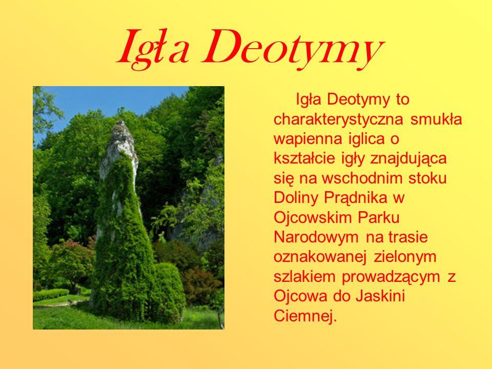 Ig ł a Deotymy Igła Deotymy to charakterystyczna smukła wapienna iglica o kształcie igły znajdująca się na wschodnim stoku Doliny Prądnika w Ojcowskim