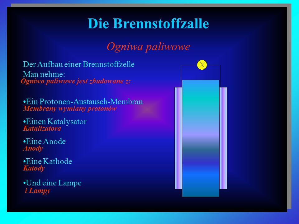Der Aufbau einer Brennstoffzelle Man nehme: Ein Protonen-Austausch-Membran Einen Katalysator Eine Anode Eine Kathode Und eine Lampe Die Brennstoffzall