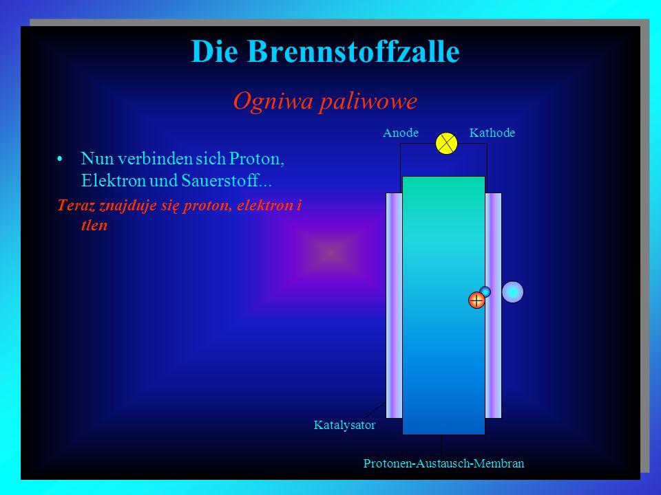 Die Brennstoffzalle Ogniwa paliwowe Nun verbinden sich Proton, Elektron und Sauerstoff... Teraz znajduje się proton, elektron i tlen + Katalysator Pro