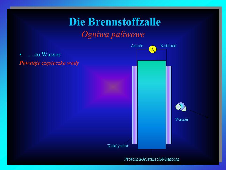 Die Brennstoffzalle Ogniwa paliwowe... zu Wasser. Powstaje cząsteczka wody Wasser Katalysator Protonen-Austausch-Membran AnodeKathode