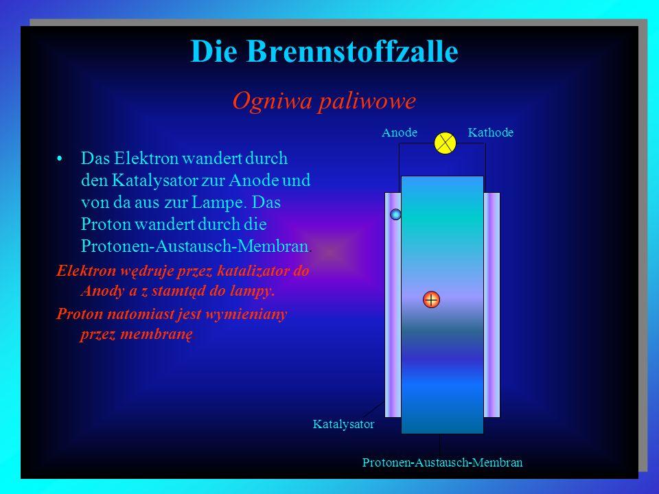 Die Brennstoffzalle Ogniwa paliwowe Das Elektron wandert durch den Katalysator zur Anode und von da aus zur Lampe. Das Proton wandert durch die Proton
