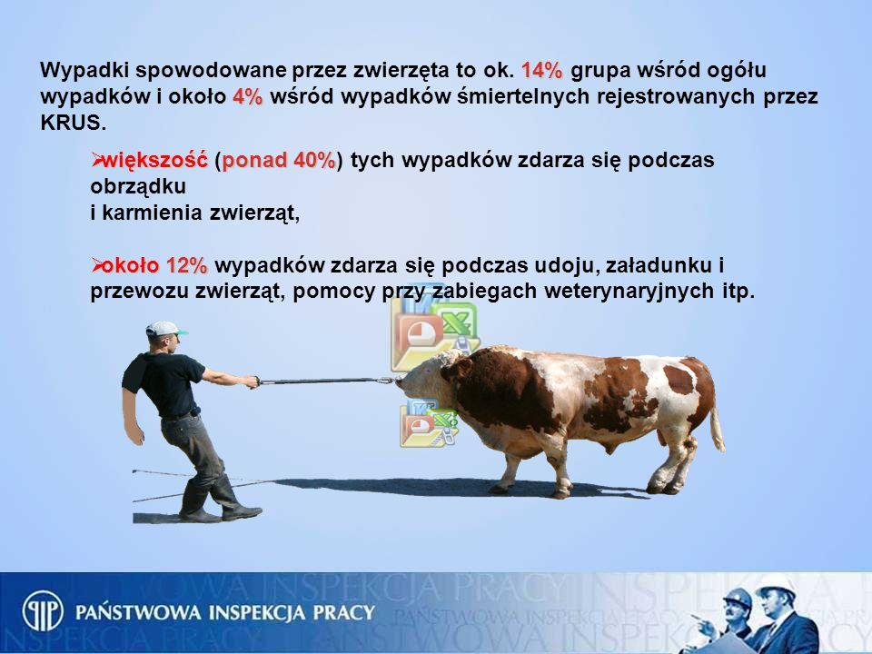 14% 4% Wypadki spowodowane przez zwierzęta to ok. 14% grupa wśród ogółu wypadków i około 4% wśród wypadków śmiertelnych rejestrowanych przez KRUS. wię