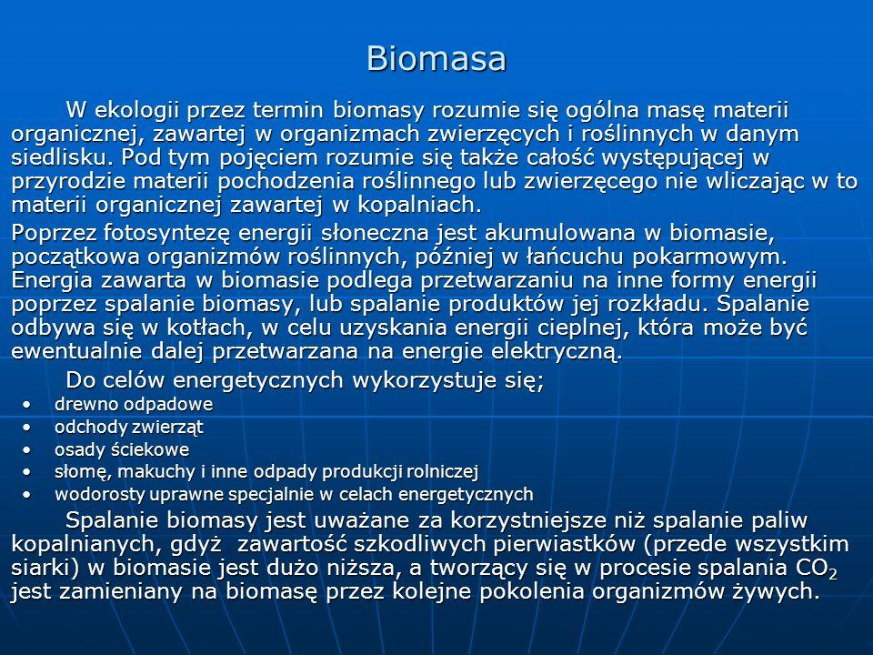 Biomasa W ekologii przez termin biomasy rozumie się ogólna masę materii organicznej, zawartej w organizmach zwierzęcych i roślinnych w danym siedlisku