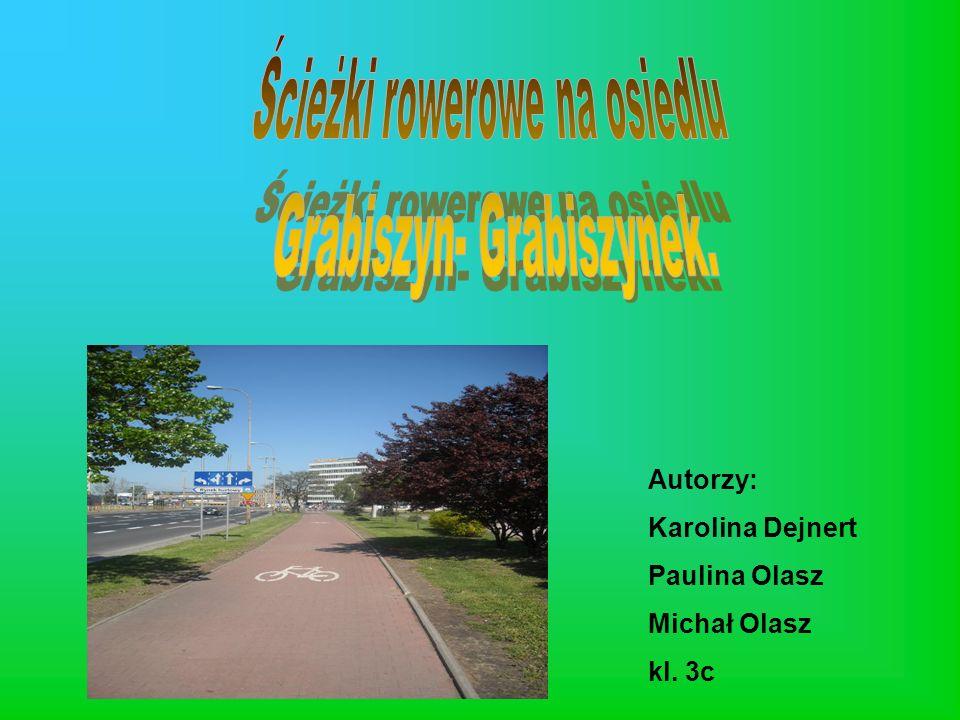 Autorzy: Karolina Dejnert Paulina Olasz Michał Olasz kl. 3c