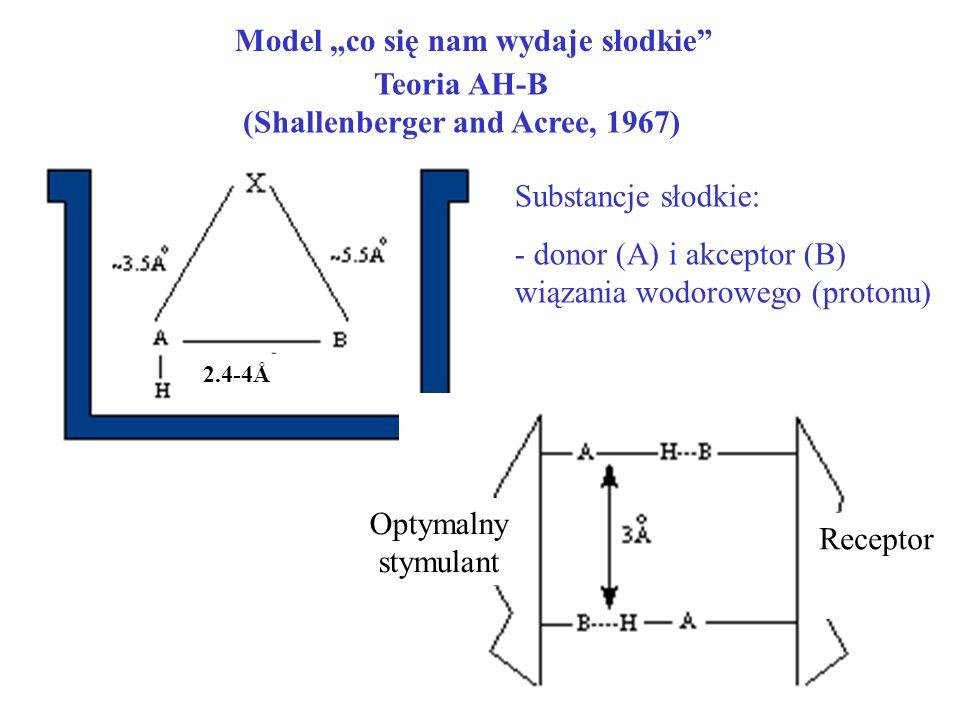 Model co się nam wydaje słodkie Teoria AH-B (Shallenberger and Acree, 1967) Substancje słodkie: - donor (A) i akceptor (B) wiązania wodorowego (proton