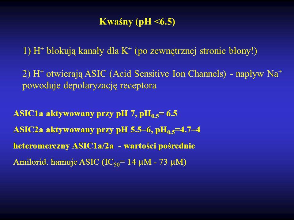 1) H + blokują kanały dla K + (po zewnętrznej stronie błony!) Kwaśny (pH <6.5) ASIC1a aktywowany przy pH 7, pH 0.5 = 6.5 ASIC2a aktywowany przy pH 5.5