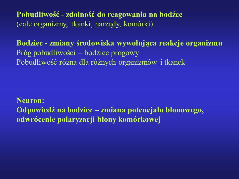 Pobudliwość - zdolność do reagowania na bodźce (całe organizmy, tkanki, narządy, komórki) Bodziec - zmiany środowiska wywołująca reakcje organizmu Pró