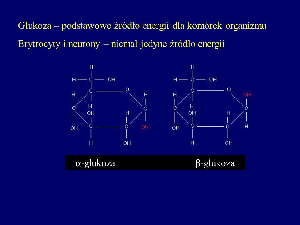 Glukoza – podstawowe źródło energii dla komórek organizmu Erytrocyty i neurony – niemal jedyne źródło energii -glukoza -glukoza