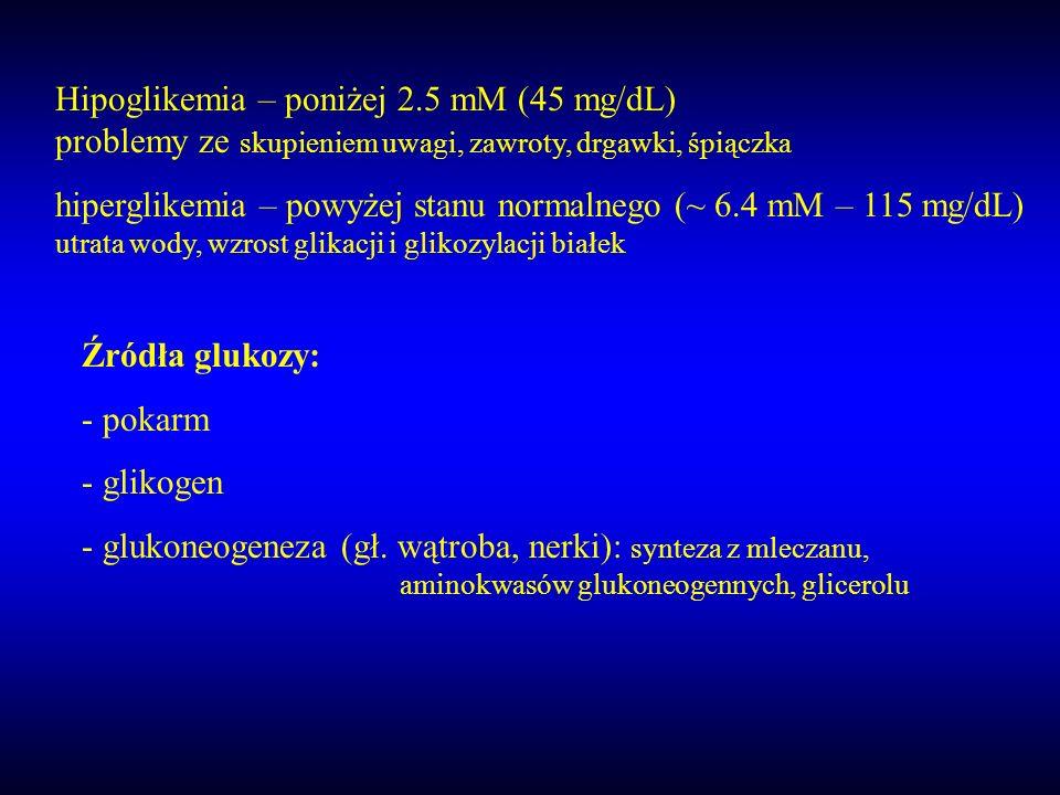 Źródła glukozy: - pokarm - glikogen - glukoneogeneza (gł. wątroba, nerki): synteza z mleczanu, aminokwasów glukoneogennych, glicerolu Hipoglikemia – p