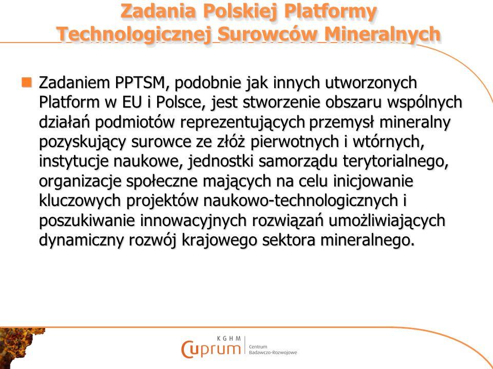 Zadania Polskiej Platformy Technologicznej Surowców Mineralnych Zadaniem PPTSM, podobnie jak innych utworzonych Platform w EU i Polsce, jest stworzeni