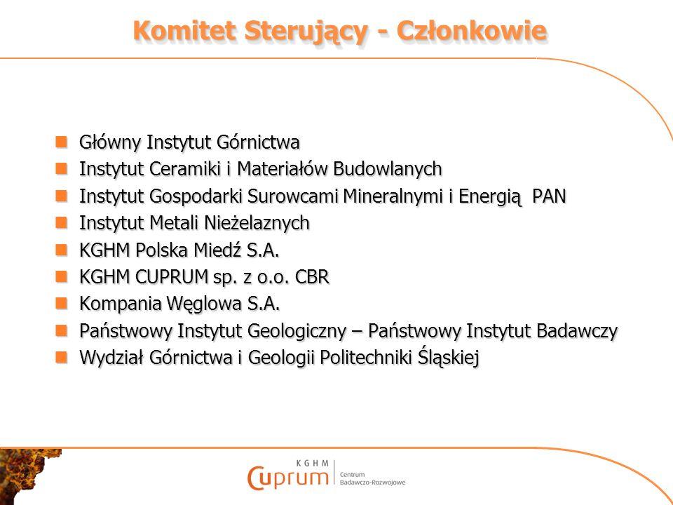 Komitet Sterujący - Członkowie Główny Instytut Górnictwa Główny Instytut Górnictwa Instytut Ceramiki i Materiałów Budowlanych Instytut Ceramiki i Mate