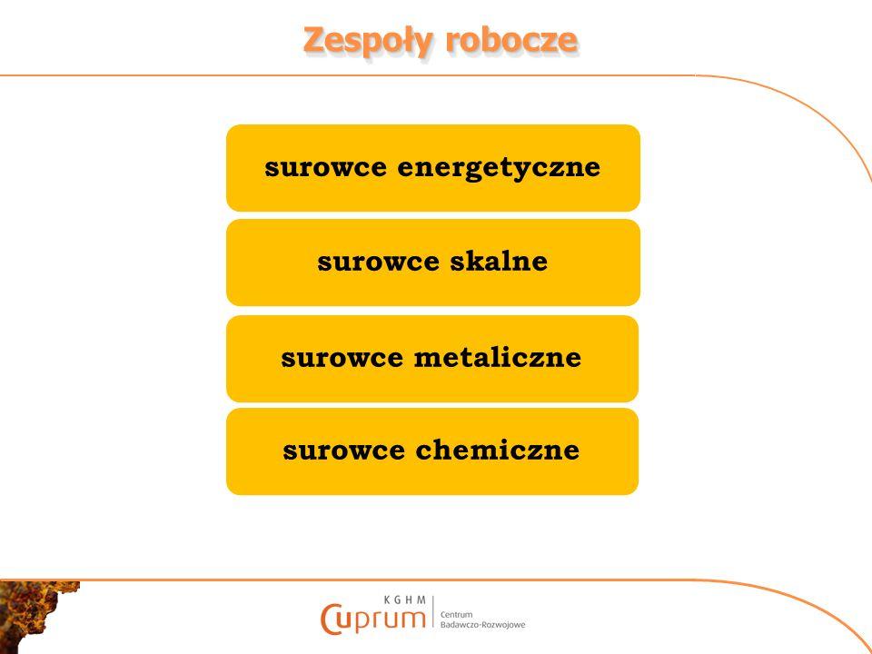 Zespoły robocze surowce energetycznesurowce skalnesurowce metalicznesurowce chemiczne