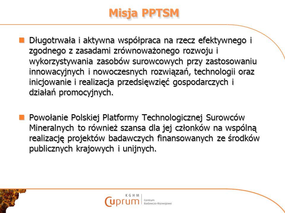 Misja PPTSM Długotrwała i aktywna współpraca na rzecz efektywnego i zgodnego z zasadami zrównoważonego rozwoju i wykorzystywania zasobów surowcowych p