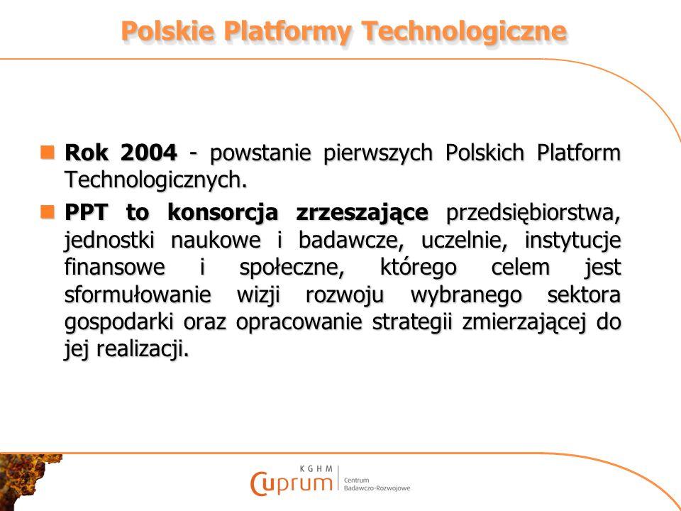 Polskie Platformy Technologiczne - zadania Udział w przygotowaniu krajowych programów badawczo-rozwojowych dotyczących strategicznie ważnych sektorów gospodarki, które stałyby się elementem Krajowego Programu Ramowego, integracja kluczowych partnerów gospodarczych i badawczych wokół tworzonych strategii, mobilizacja istotnych środków publicznych i prywatnych, krajowych i zagranicznych, optymalne wykorzystanie funduszy strukturalnych z punktu widzenia konkurencyjności gospodarki, promocja i lobbing działań badawczo- rozwojowych korzystnych dla reprezentowanych przez Platformy sektorów gospodarki.