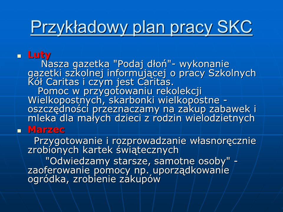 Przykładowy plan pracy SKC Luty Nasza gazetka